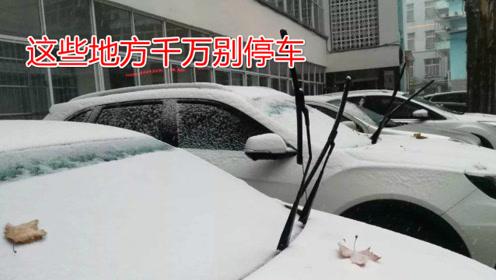 冬季停车时要注意,这种地方再宽敞也别停,很多车主已中招