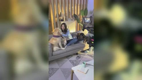 艾米和kiwi参加天猫保洁用品的拍摄
