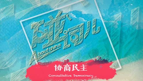发扬社会主义民主 推进协商民主广泛多层制度化发展