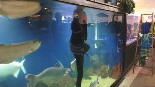 邻居家的超大型鱼缸,里面混养的宠物鱼真多,我猜有些鱼你都没见过