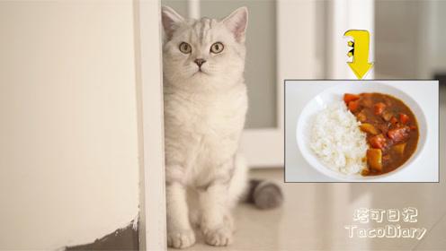 猫咪塔可让妈妈做好吃的,菜端上桌满脸嫌弃,心疼铲屎官!