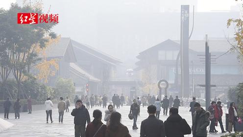 成都多地出现大雾天气,气象台发布大雾黄色预警