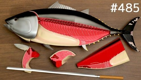 日本大佬设计的动物拼图玩具,创意感十足,任意拆解可塑性极强