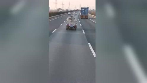 这是高速公路上的小合唱吗,默契十足!