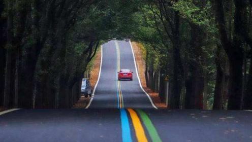 中国有一条最美福道,全长365公里风景极美,司机:就是看不腻