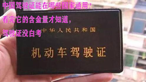 中国驾照能在哪些国家通用?看完它的含金量才知道,驾驶证没白考