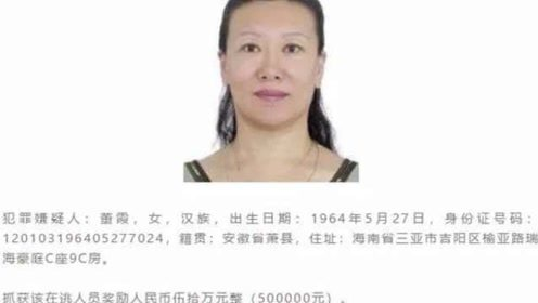 海南警方悬赏50万抓捕女头目:对三亚旅游秩序造成恶劣影响