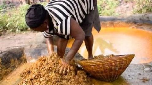 非洲人吃的油,制作方式简单粗暴,看完让人大开眼界