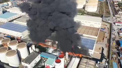 上海浦东一粮油公司突发火灾 现场浓烟滚滚直冲天际