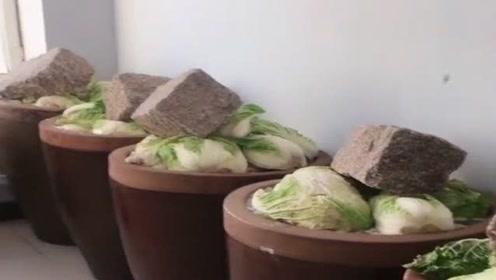 北方的冬天,可以吃的蔬菜很少,所以家家都要大缸腌制酸菜!