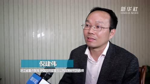 专家:2019年中国经济社会发展成绩斐然
