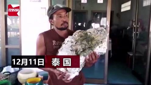 """拾荒者海滩上捡到一块""""石头"""",竟是龙涎香:价值500万"""