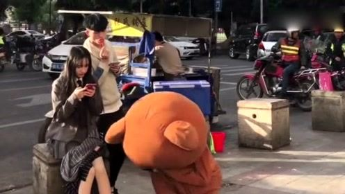 网红熊越来越傲娇了,竟然敢去撩别人的女友,你就不怕挨打吗