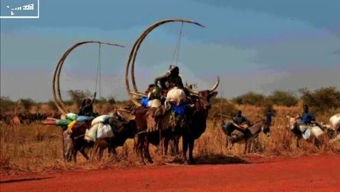 非洲人为啥会这么穷?看他们一天的工作内容,我们一小时就可以搞定