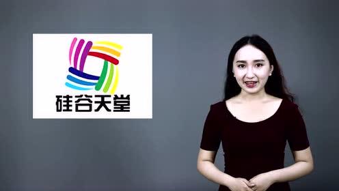 4tube中国学生_gurutube丨中国资本市场九大派系【硅谷天堂】