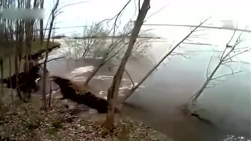 小伙子河边钓鱼发现河水异样,要不是跑得快就葬身河中了!