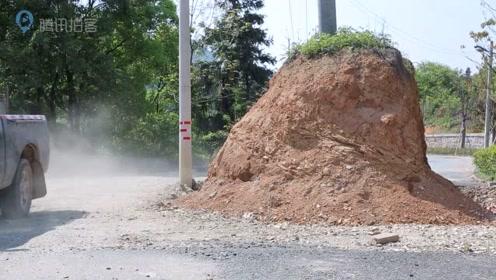 新修村道现数十根电线杆  车辆路过如绕梅花桩