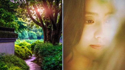 佟丽娅晒美景自拍 春意盎然尽显朦胧美