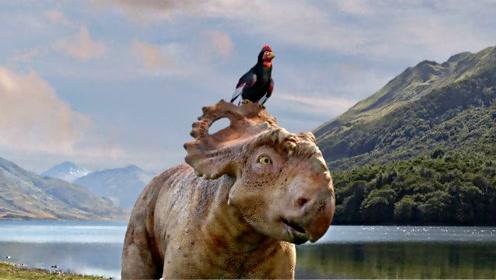 《与恐龙同行》:每块化石背后都有一个好故事