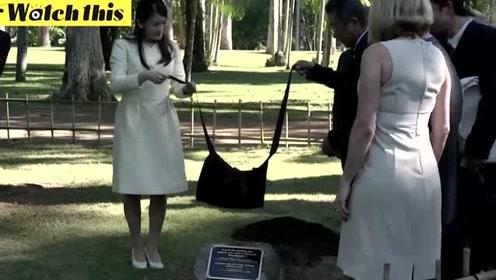 日本真子公主现身巴西 种下巴西木树苗庆贺日本移民巴西110年