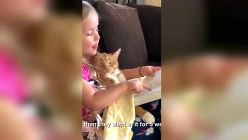有趣的小女孩给她的宠物猫读睡前故事