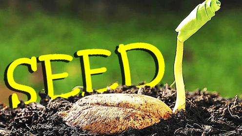 屌德斯解说 模拟种子 神奇的种子变成各种样子疯狂传播
