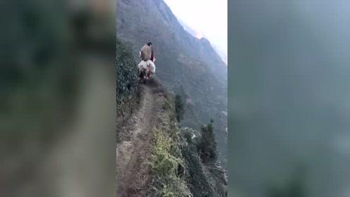 脚下千尺悬崖,女儿身男儿心,一个敢开一个敢坐,佩服!
