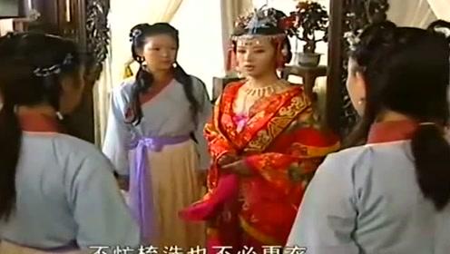 丫鬟们被新来的将军夫人惊艳,杜冰雁想离开却有理说不清!