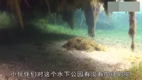 """世界上最""""任性""""的公园,一言不合就沉入湖底,游客只能潜水游逛"""