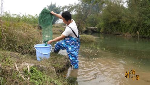 小强在村庄旁小河里下地笼,收获真的不少,还放生了几条