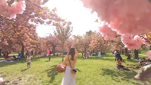 樱花季,巴黎网红公园的野餐打卡完毕