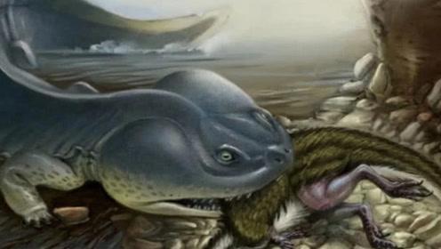 """史前""""娃娃鱼""""到底有多恐怖?专家:脑袋65厘米,曾以霸王龙为食!"""