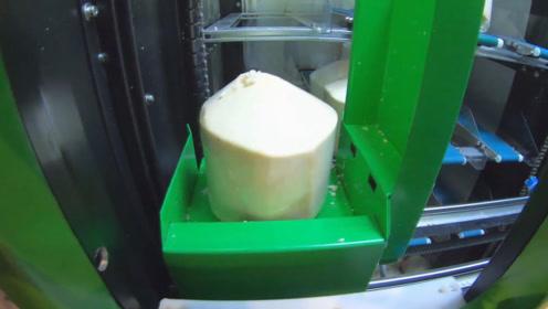 居然还有椰子自动售货机,这几种自动售货机都好奇特