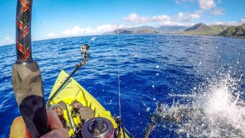 这是鱼之音?不一样的捕鱼体验,捕鱼爱好者