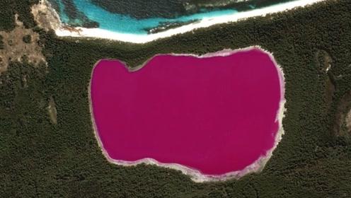 世界上最奇葩的湖,水的颜色都是粉嫩的,俯瞰像个大果冻