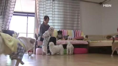 韩国台球女神韩周熙生活状态大曝光,身材高挑性感,好可爱!