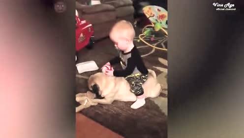 坐到狗狗身上的宝宝 狗狗一动就把她摔了下去 幸好被扶住了