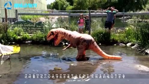 作死饲养员假扮霸王龙,挑衅鳄鱼,不料意外发生,镜头拍下全过程