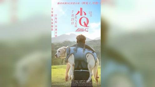 电影《小Q》致敬终其一生服务于人类的超级英雄