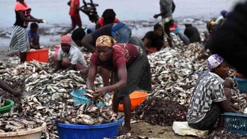 为什么非洲人宁愿饿死,都不愿意去吃海鲜,中国吃货:活该被饿死