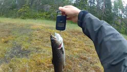 2米水泡子钓上9斤大鱼,谁说钓鱼靠的是技术?这位大叔赚大了