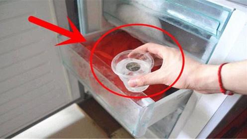 出远门为什么要在冰箱里放一枚硬币?聪明的人都这样做,太实用了