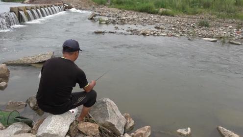 钓鱼:急水流上用七星漂,初次尝试,效果相当好啊!