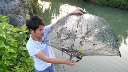 小志好久没有放地笼了,这河里的鱼依然的多,一个晚上收获满满