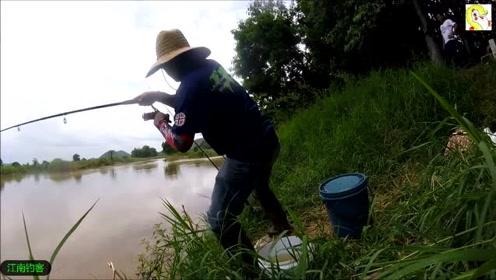 男子在河边撒下四根钓竿,看着钓竿一动就激动的抓起钓竿拉钓