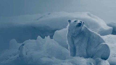 研究:2100年气候变暖将使世界GDP减少7%