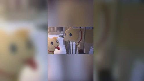 追光吧少年短视频大赛复赛作品 动画类《窝窝》
