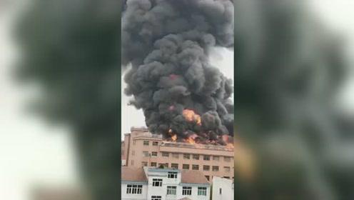 浙江义乌一厂区发生大火 过火面积约200平米