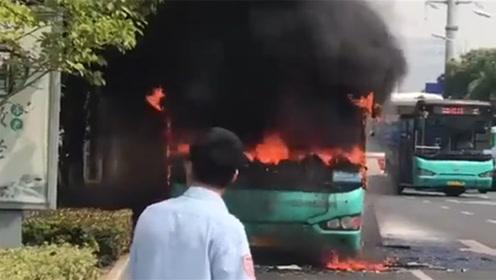 苏州一公交车自燃起火 幸司机及时疏散无人员伤亡