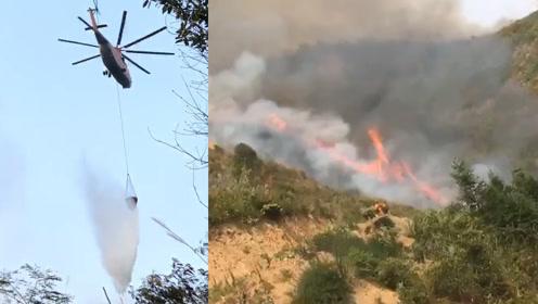 湖北咸宁因村民烧纸引发森林火灾明火已被扑灭 直击救援全程